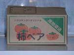 『リンダ』柿ベア(箱)
